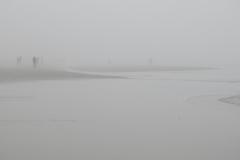 People Wander Foggy Beach  2