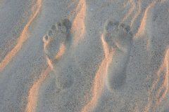 Sunset Footprints in the Sand 1
