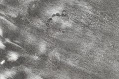 Footprint in Moon Sand