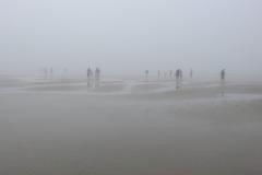 People Wander Foggy Beach 1