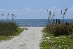 Sandy Beach Access Grasses