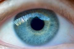 Eye of Dane