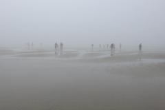 People Wander Foggy Beach