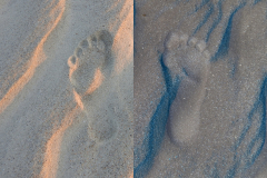 Sunset Footprints in the Sand Compare -  1/2 Negative
