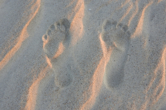 Sunset Footprints in the Sand 1 Horizontal
