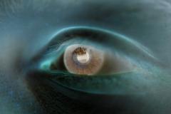 Boy Eye Close-up - Negative