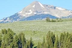 Yellowstone Landscape 2