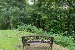 Bench Faces the Woods