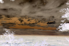 Chocolate Sky Glows - Negative