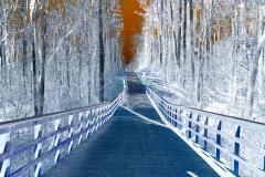 Bridge To the Future - Negative