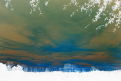 Green n Orange Sky - Negative