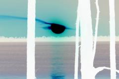 Eye of the Sun Sets - Negative