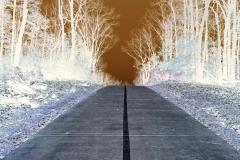Path To the Sun - Negative