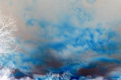 Blue Marbled Sky - Negative