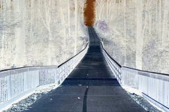 Bridge and Beyond - Negative