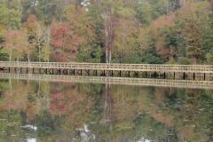 Fall Bridge Reflection
