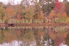 Warm Fall Colors Reflect