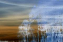 Murky Waters Reflect Blue Trees - Negative
