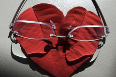 Reading Glasses Reflect on Love