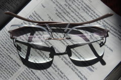 Reading Glasses on BIble