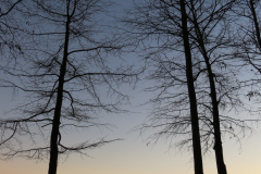 Lakeside Seating at Sunset - Vertical