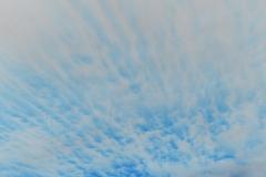 Streamers Sunset 2 - Vertical - Negative