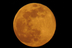 Full Orange Moon 2