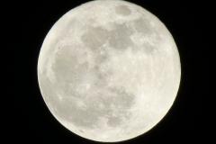 Full White Moon