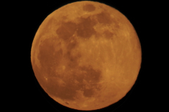 Full Orange Moon 1