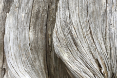 Tapered Twirling Wood