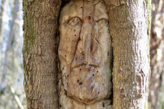 Carved Wooden Indian Face