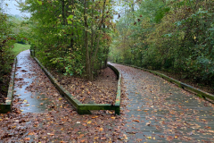 Fall's Wide and Narrow Paths