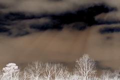 Darkness Descends - Negative