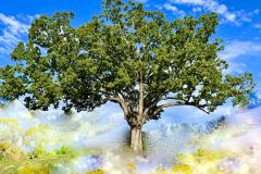 Heavenly Tree