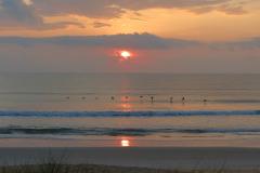Flying Pelicans at Ocean Sunset