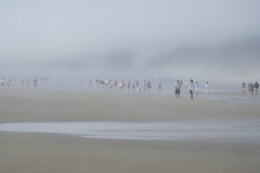 People Emerge from Foggy Beach