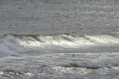Silver Wave Rolls 2