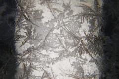 Pole of Frost - Negative